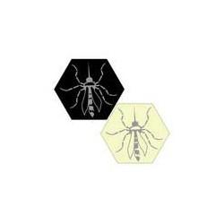 Hive - Mosquito