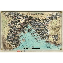 Baldur's Gate Map (23' x 17')